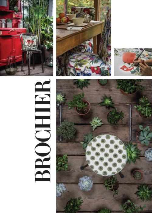 brochier_newsletter1