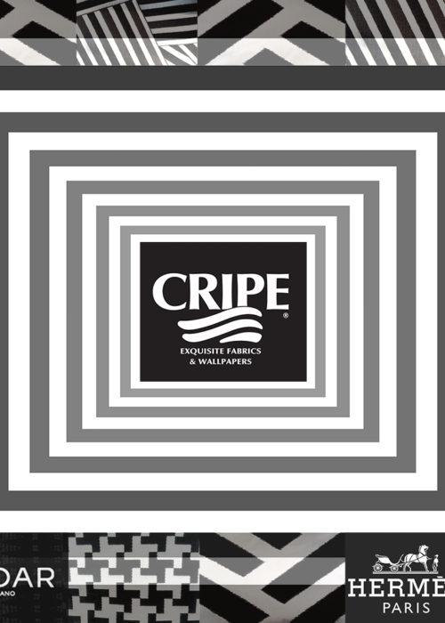 CRIPE_brighting_black_white_flyer
