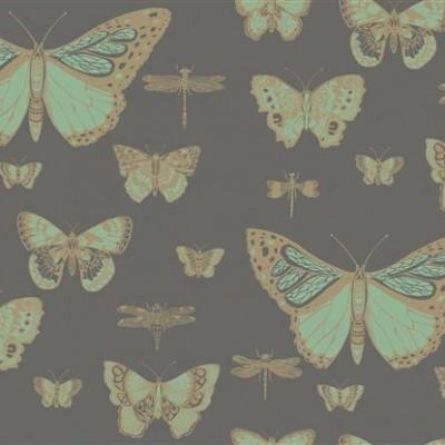 1-coleandson_Butterflies & Dragonflies II