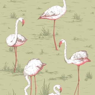 cole-and-son-icon-flamingos-112-11038_q1