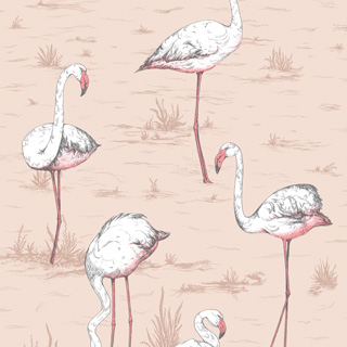 cole-and-son-icon-flamingos-112-11039_q1