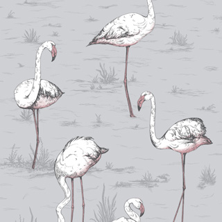 cole-and-son-icon-flamingos-112-11040_q1