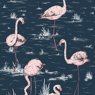 cole-and-son-icon-flamingos-112-11041_q1
