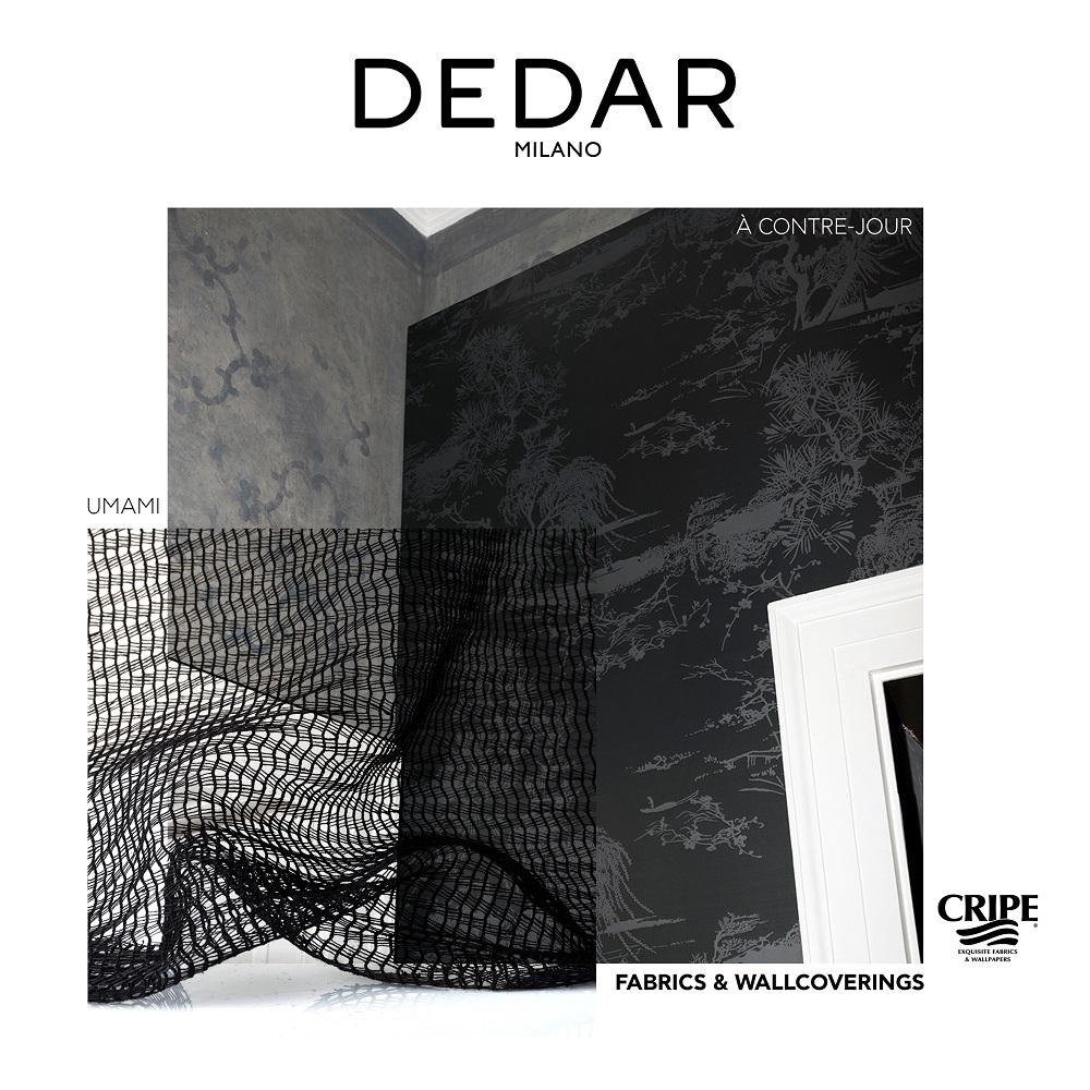 CRIPE-PRESENTATION-DEDAR-Milano-2020-18